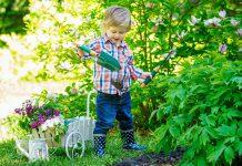 bezpieczna-zieleń-w-przedszkolnym-ogrodzie