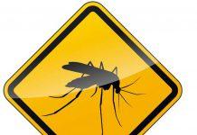 ochrona-przed-komarami-meszkami-i-kleszczami-w-przedszkolu1