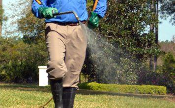 zwalczanie-komarow-i-kleszczy-w-ogrodku-przedszkolnym