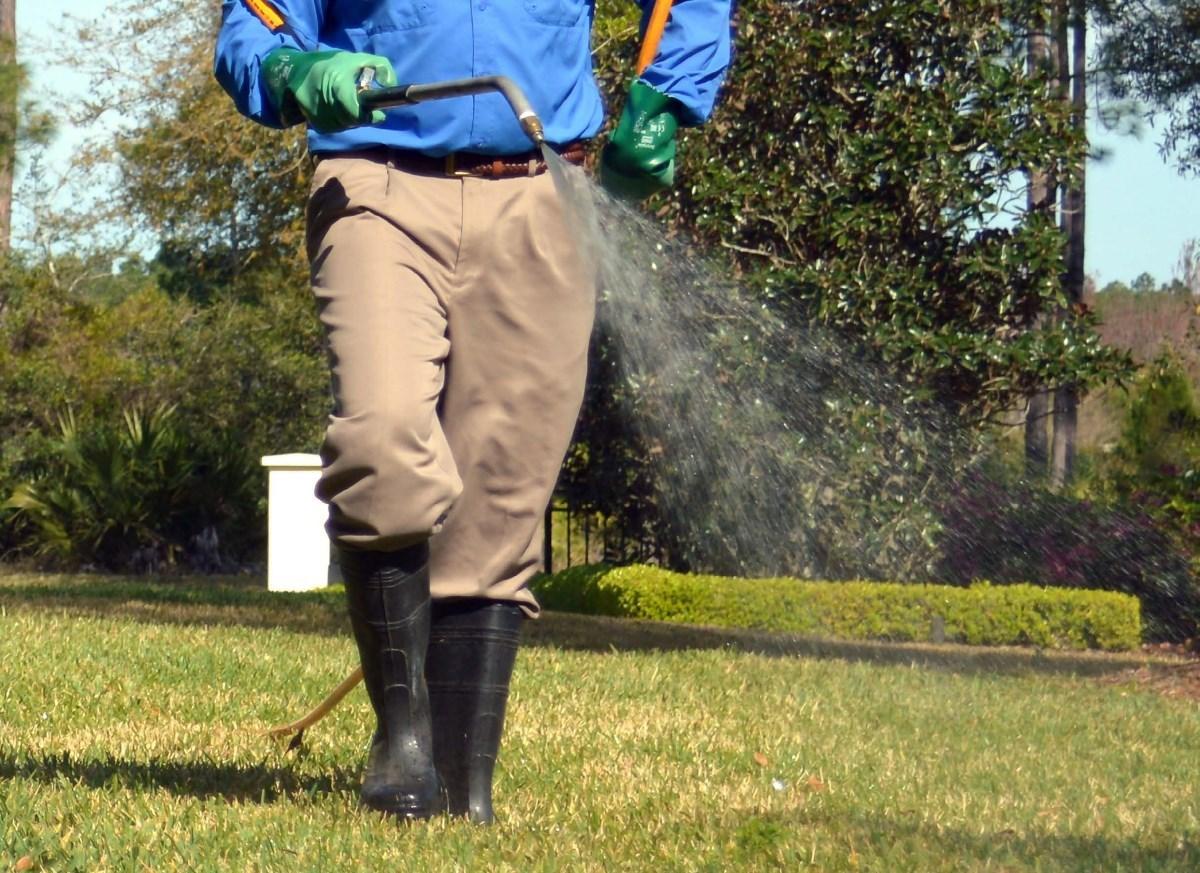 Zwalczanie komarów i kleszczy