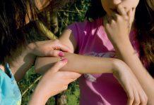 fot. Fotolia.com Kleszcze - dlatego chronić przed nimi dzieci